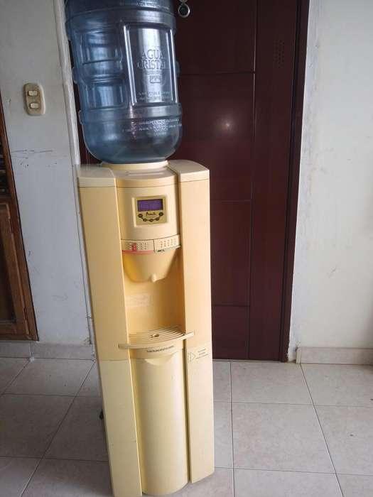 Dispensador de agua Avanti