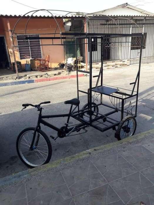 Vendo bicitaxi carricoche