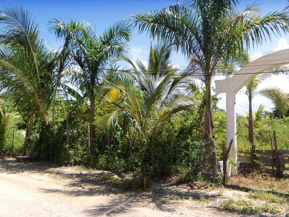 Venta Lote zona norte Punta canoa