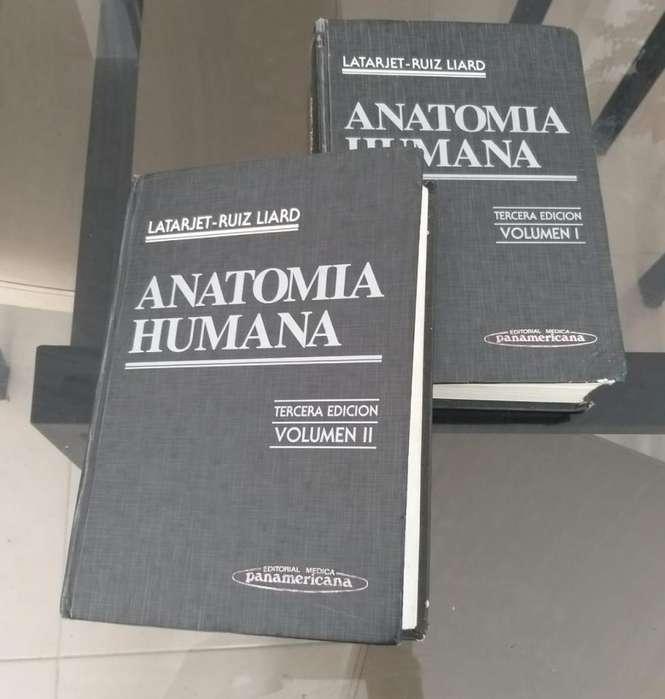 Ganga Anatomía Humana/ Latarjet- Ruiz Liard