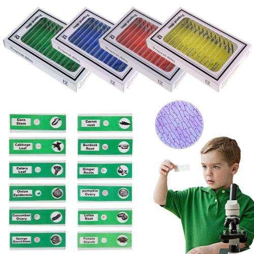 48 piezas para microscopio preparado plástico espécimen biológico