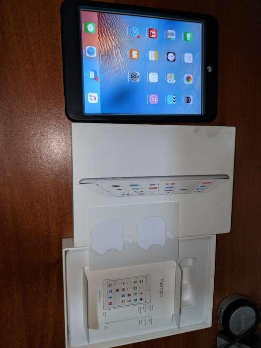 iPad Mini Como Nuevo
