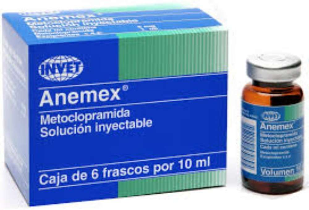 Anemex