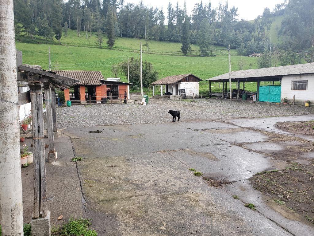 Venta de Hacda Ganadera 500 Has Amaguaña