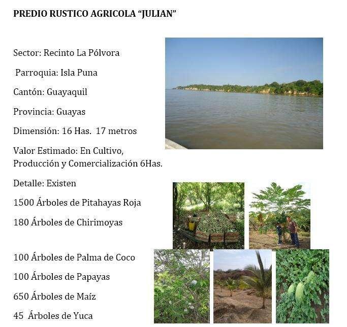 Venta de Hacienda, Quinta en Isla Puna, Vía a la Costa