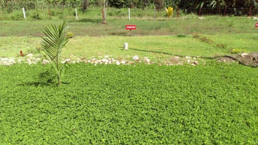 Venta Terrenos rurales Tarapoto, Residencial Sol Del Valle, desde 147 m2