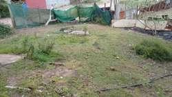 Vendo Terreno en Villa Gesell 9x30