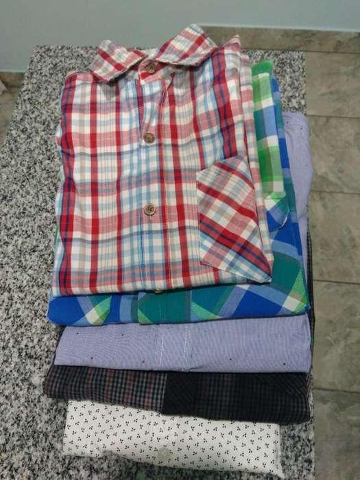 Camisas Talle 16