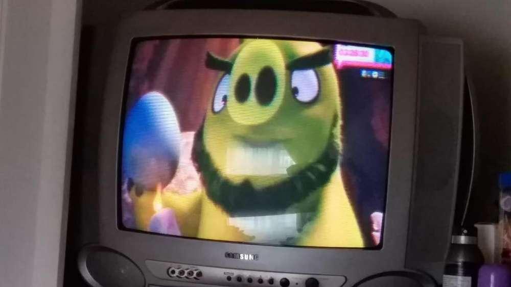 televisor samsung 21