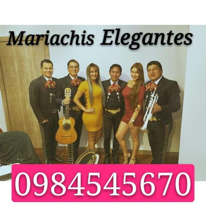 Precios de Mariachis en La Salle