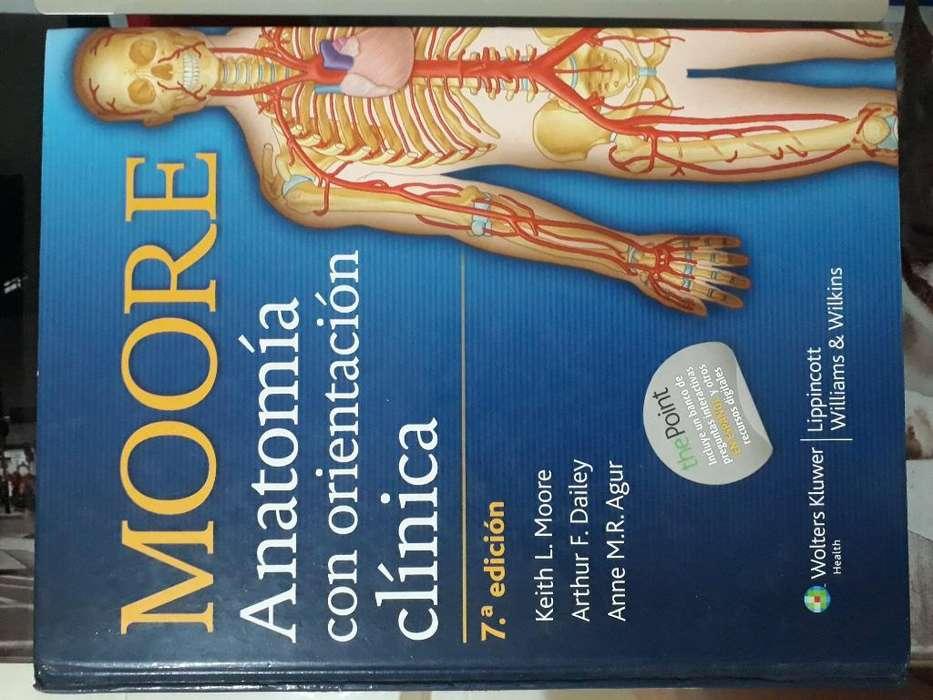 Anatomía de Moore