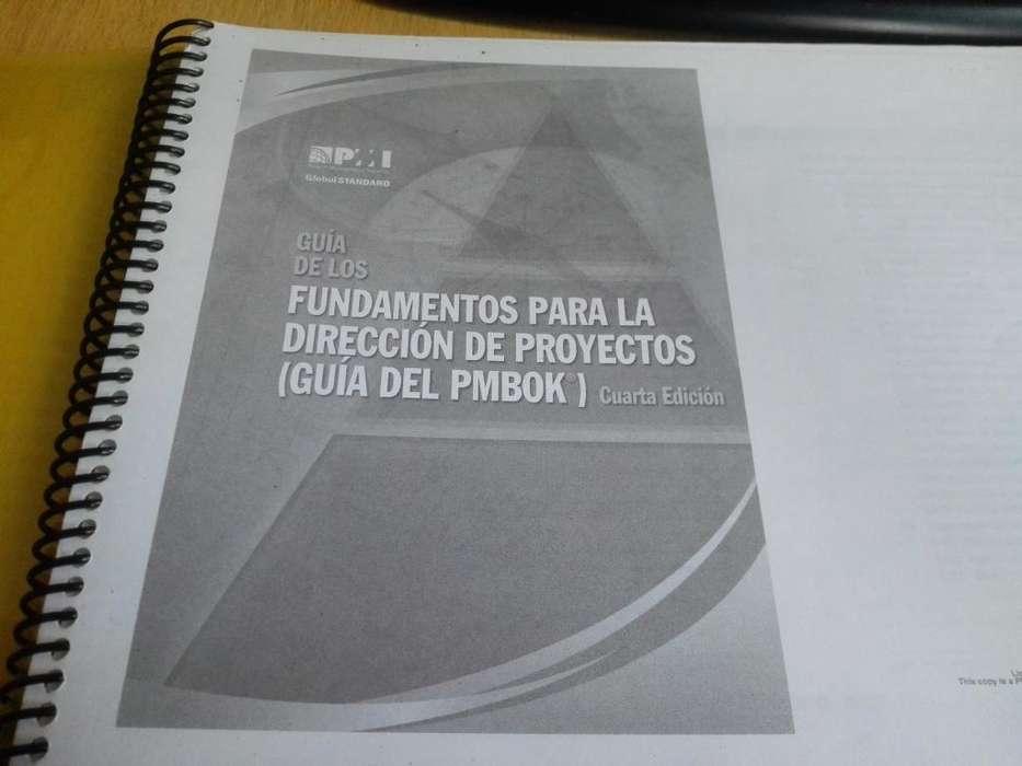 Administración de proyectos - PMI Pmbok