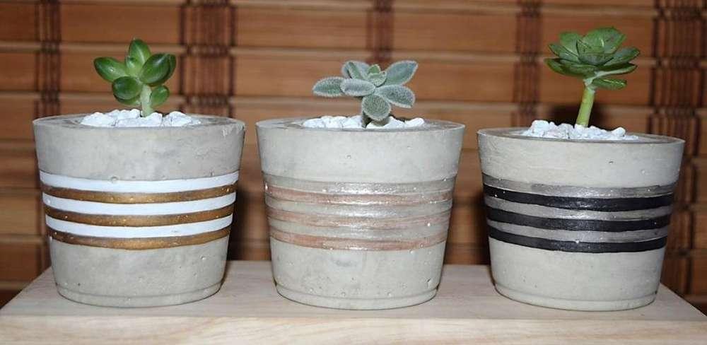 Macetas en cemento con plantas suculentas