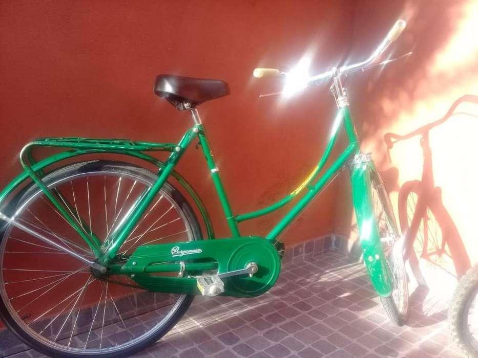 Bicicleta de Mujer Rodado 26 Marca Bergamasco