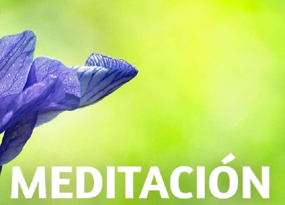 Meditacion en Movimiento