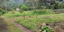venta de terrenos oxapampa urbanos y rurales