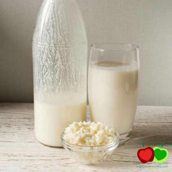 Honguitos para Elaborar Yogurt Kefir