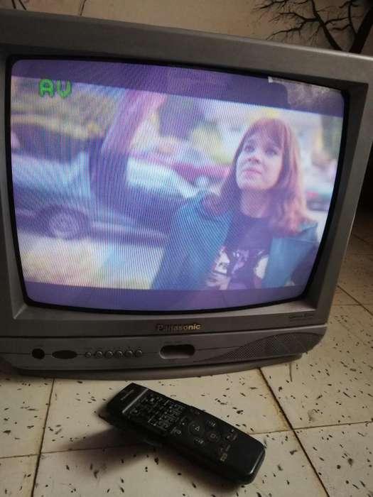 Tv Panasonic. de 21 Pulg Color