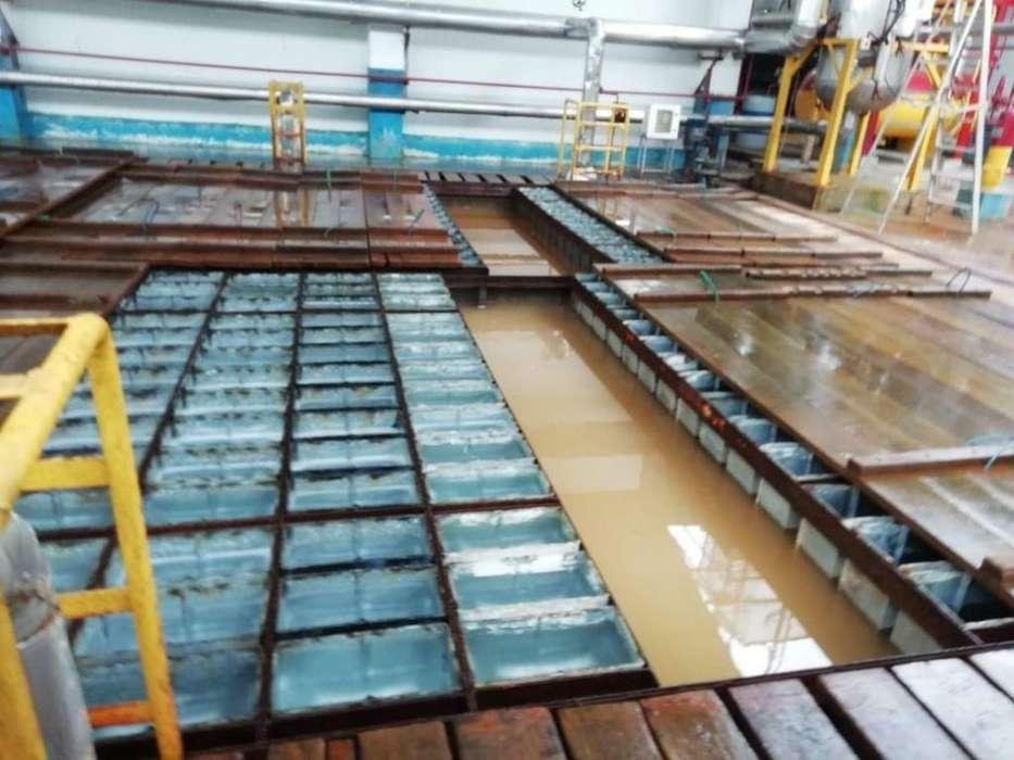 Venta de planta fábrica empacadora de producción de camarón Esmeraldas