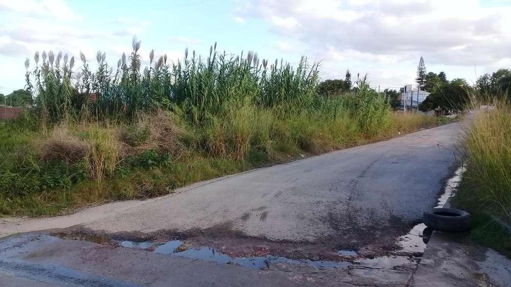 Vendo terrenos en calle Gdor Parera Consulte