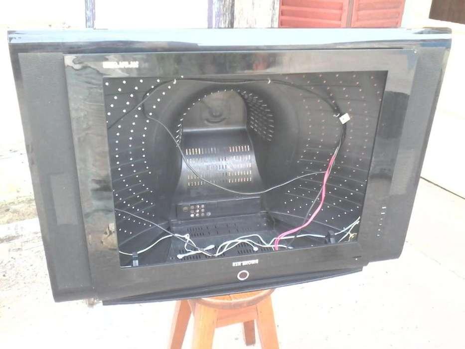 Carcazas Y Tapas Tv 25 A 29 Philips,philco,noblex,etc