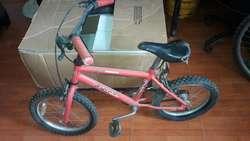 Bici de Varon