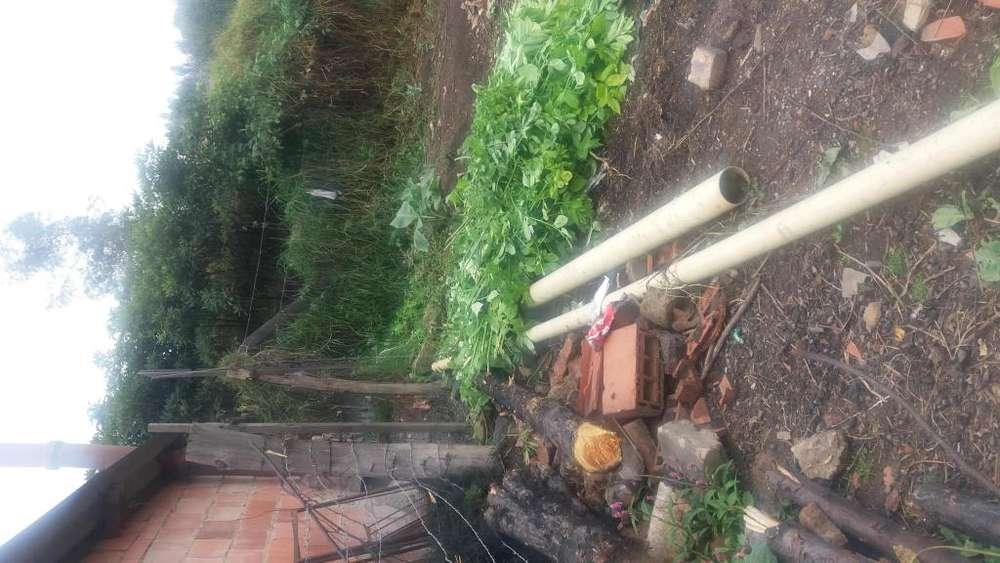 Se vende Lote Rural economico en Cogua Cundinamarca Tel 3106987042