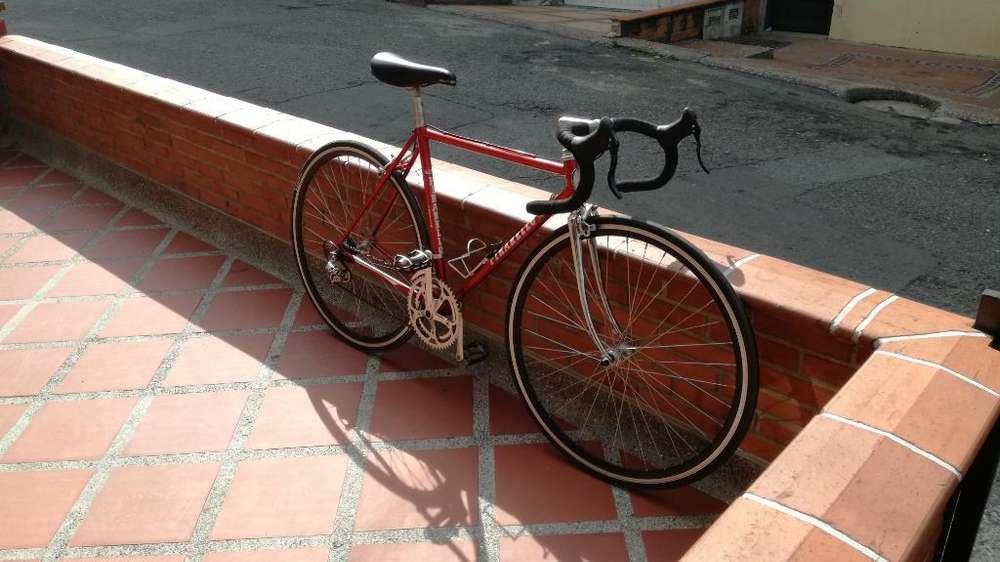 Bicicleta de Ruta Pinarello Treviso