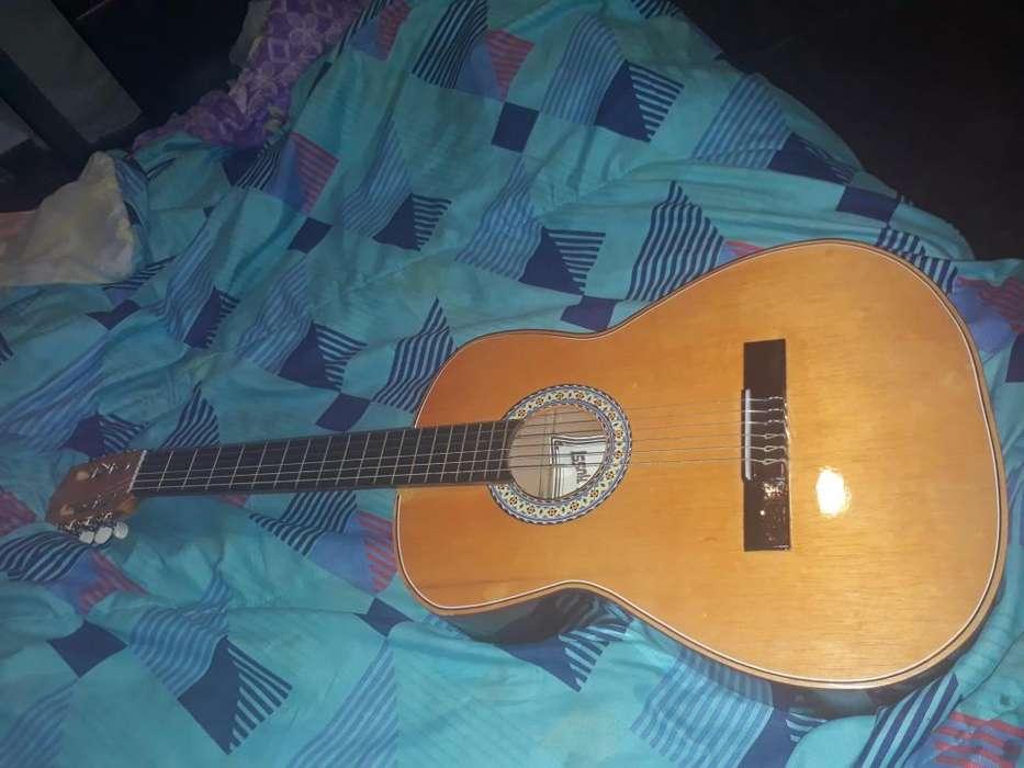 Guitarra acuatica