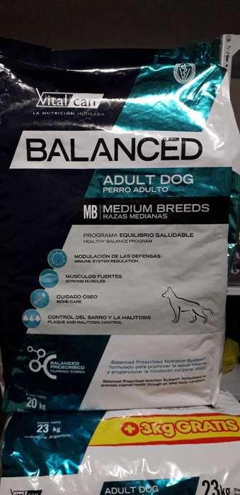 Balanced Adulto Raza Mediana 20kg