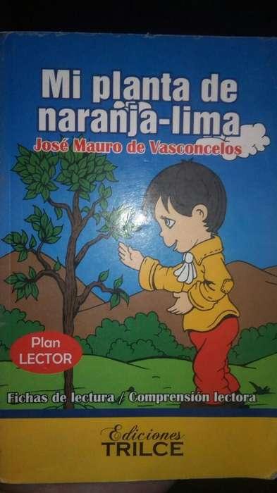 Vendo Obra Mi Planta de Naranja - Lima