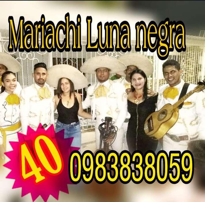Mariachi Precio Ecuatoriana