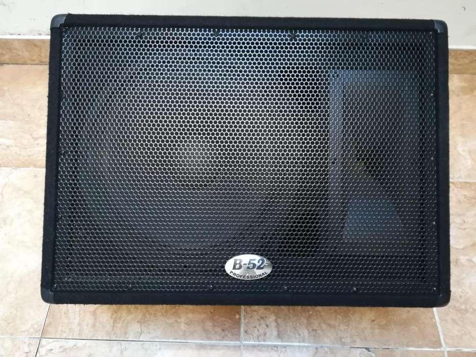 Parlantes B52 Pro Mxnm 15 300w Par