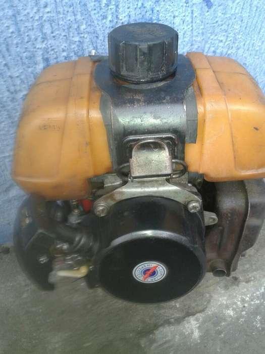 Se Vende Motor de Guadana