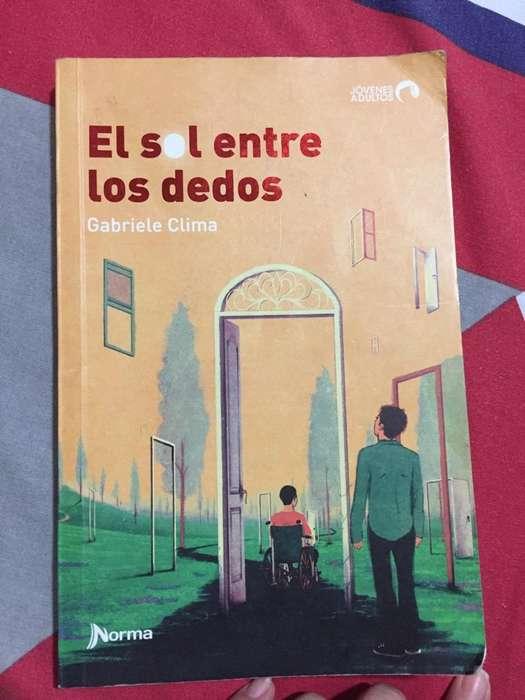 Libro El Sol entre Los Dedos Gabriele C