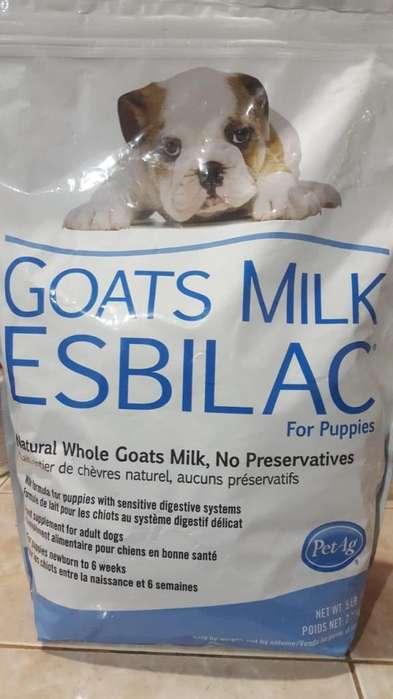 Goats Milk Esbilac(leche De Cabra Esbilac Para Cachorros)