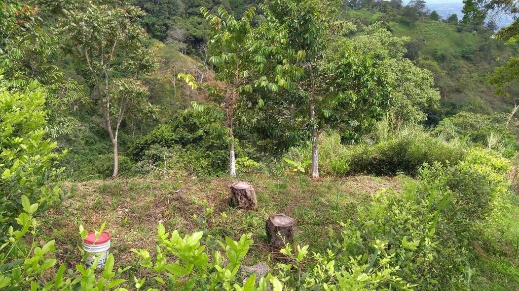 LOTE EN VENTA vereda gualilo alto de los padres Bucaramanga
