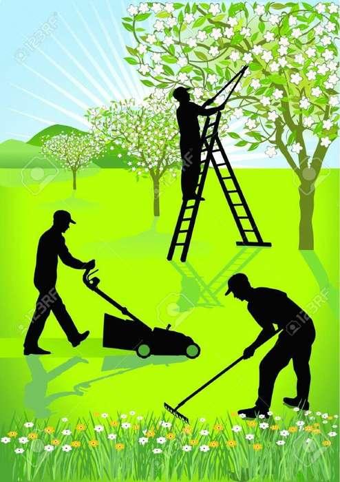 Jardineria-mantenimiento Y Estetica