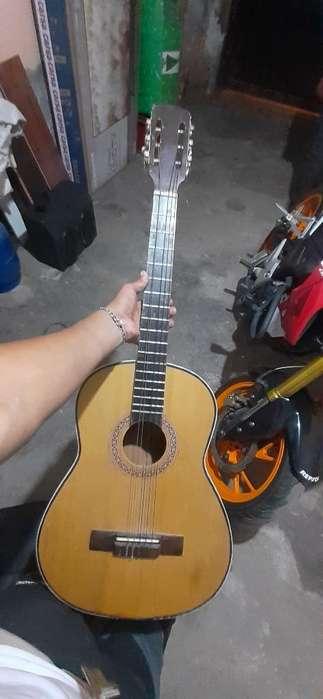 Guitarra 6 Cuerdas