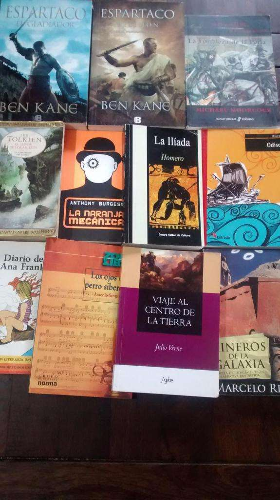 LIQUÍDO Lote de 14 libros