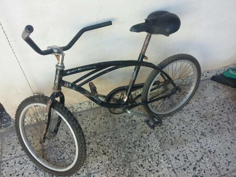Bicicleta Bergamasco Rodado 20.