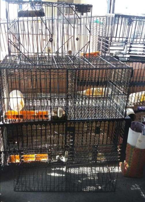 <strong>jaula</strong>s para Conejos Son 20 <strong>jaula</strong>s