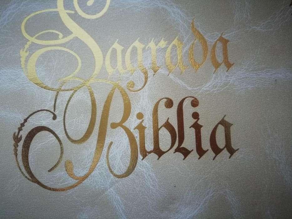 Biblia Como Nueva