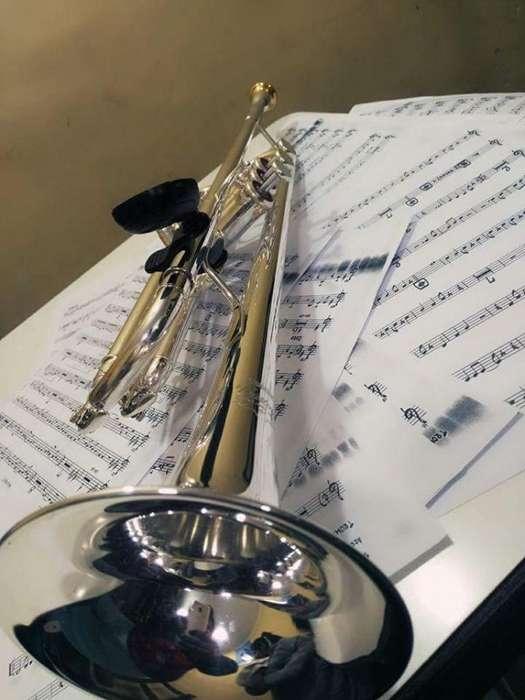 Vendo Trompeta Yamaha Custom Como Nueva