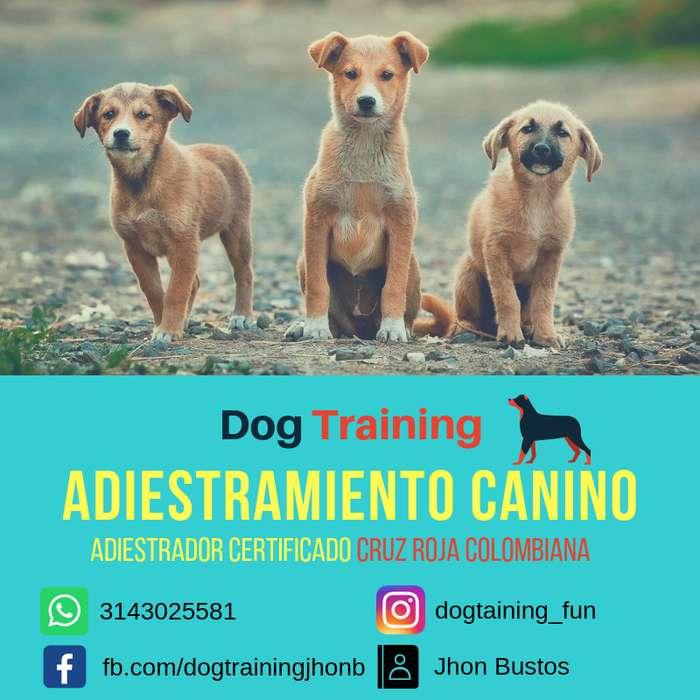 Adiestramiento Canino Funza