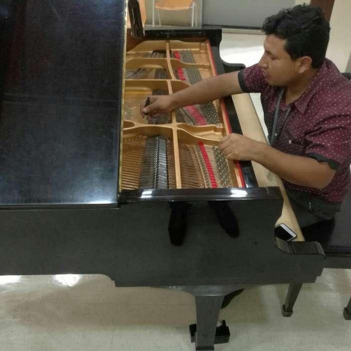 Tecnico Afinador Y Restaurador Pianos Cl