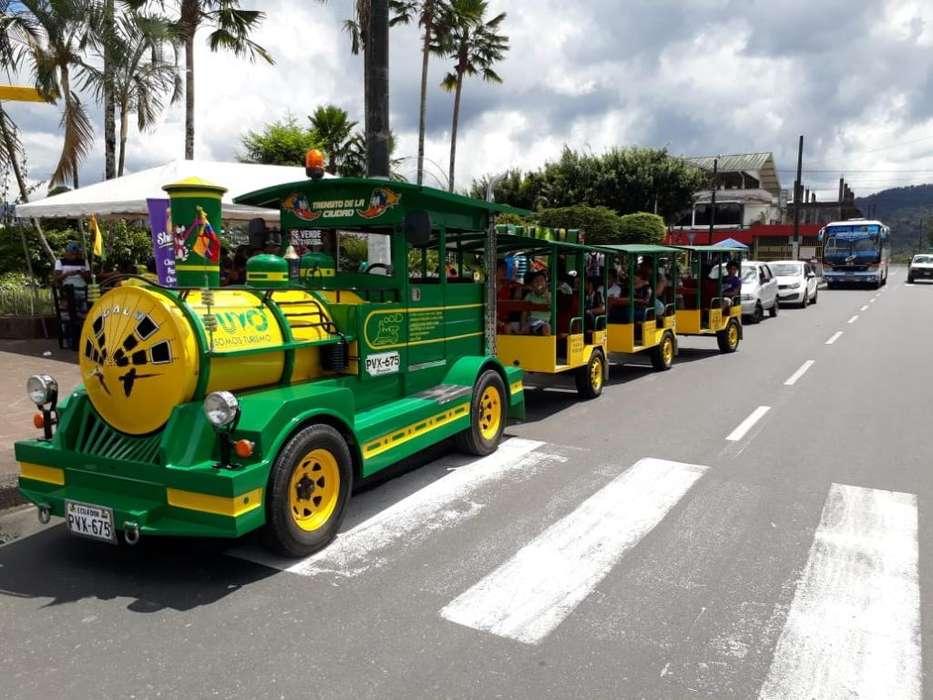 Vendo Tren Turístico!!