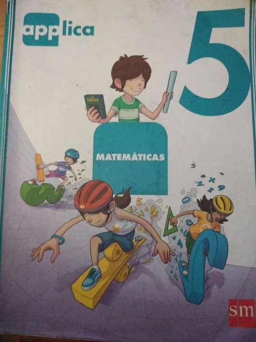 Matematicas Applica 5 Usado