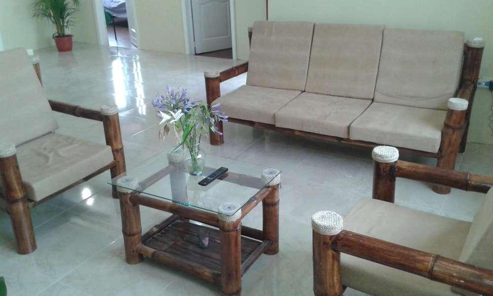 Muebles de Caña Guadua, Bamboo Madera