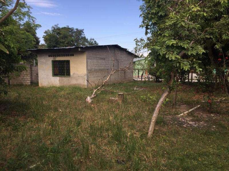 Cod. VBPAI11335 Casalote En Venta En Saldaña Vereda La Esperanza